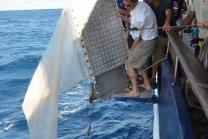 Bringing in the Manta Trawl