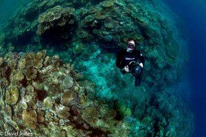 Plastic Oceans in Fiji