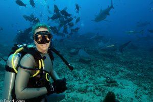 Tanya with Bull Sharks