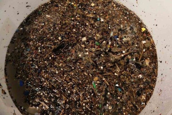 microplastics in a bucket of sea water