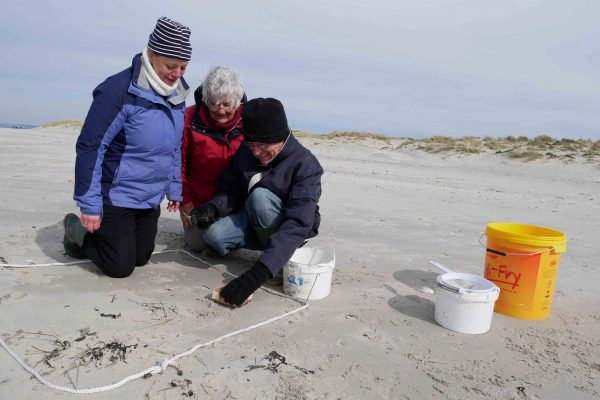 taking microplastics samples