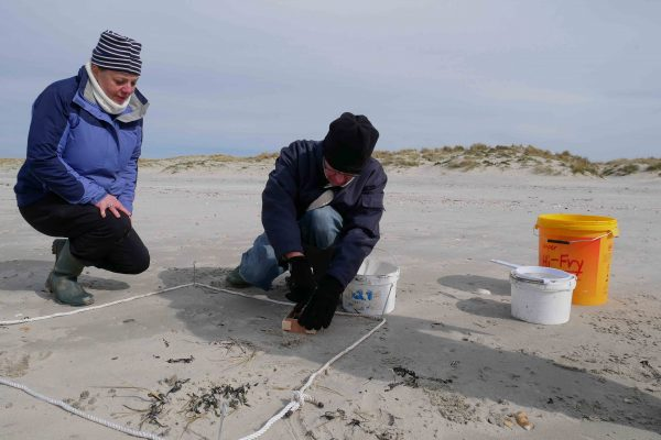 taking sediment samples for microplastics