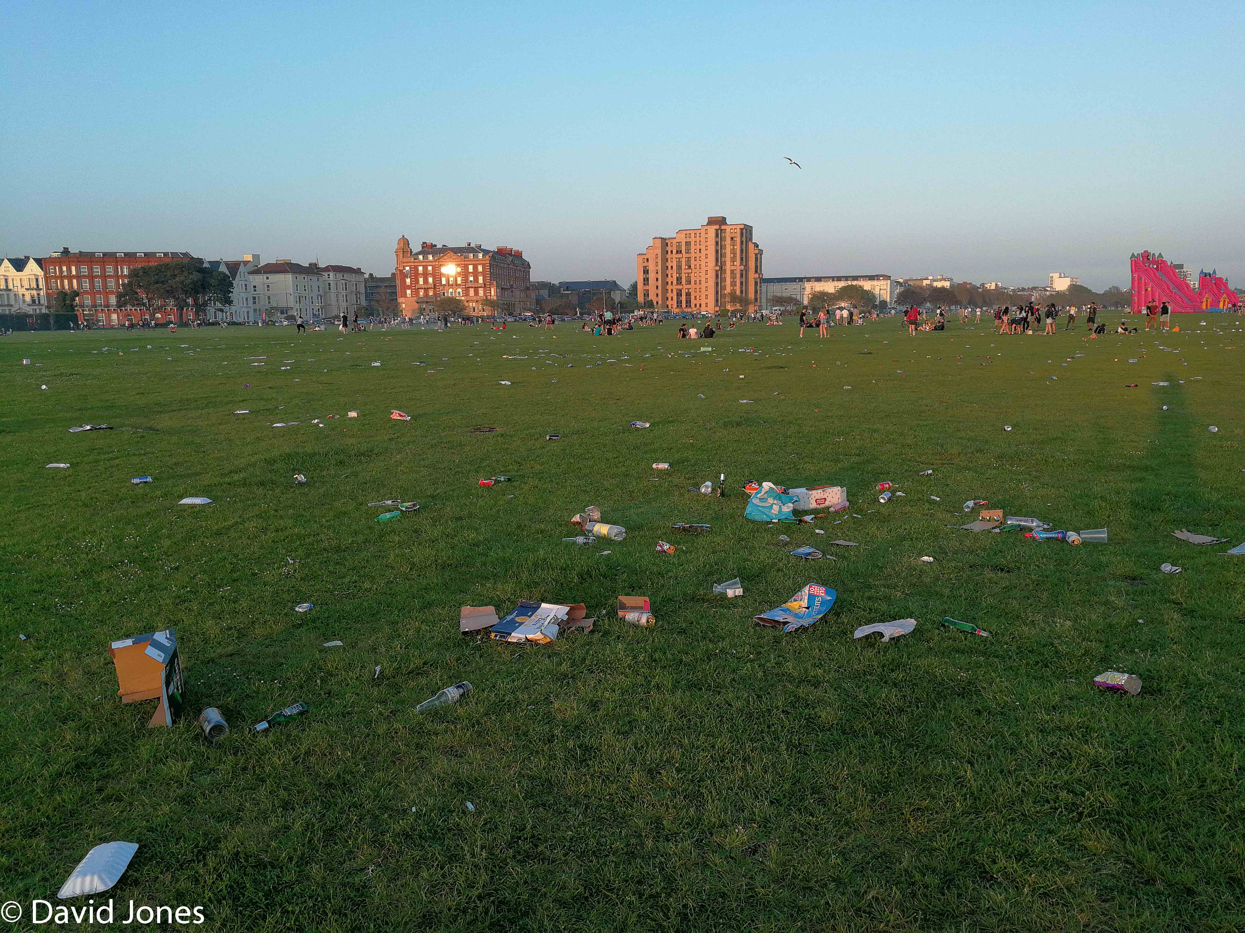 Southsea Common litter