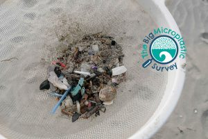 microplastic survey home page