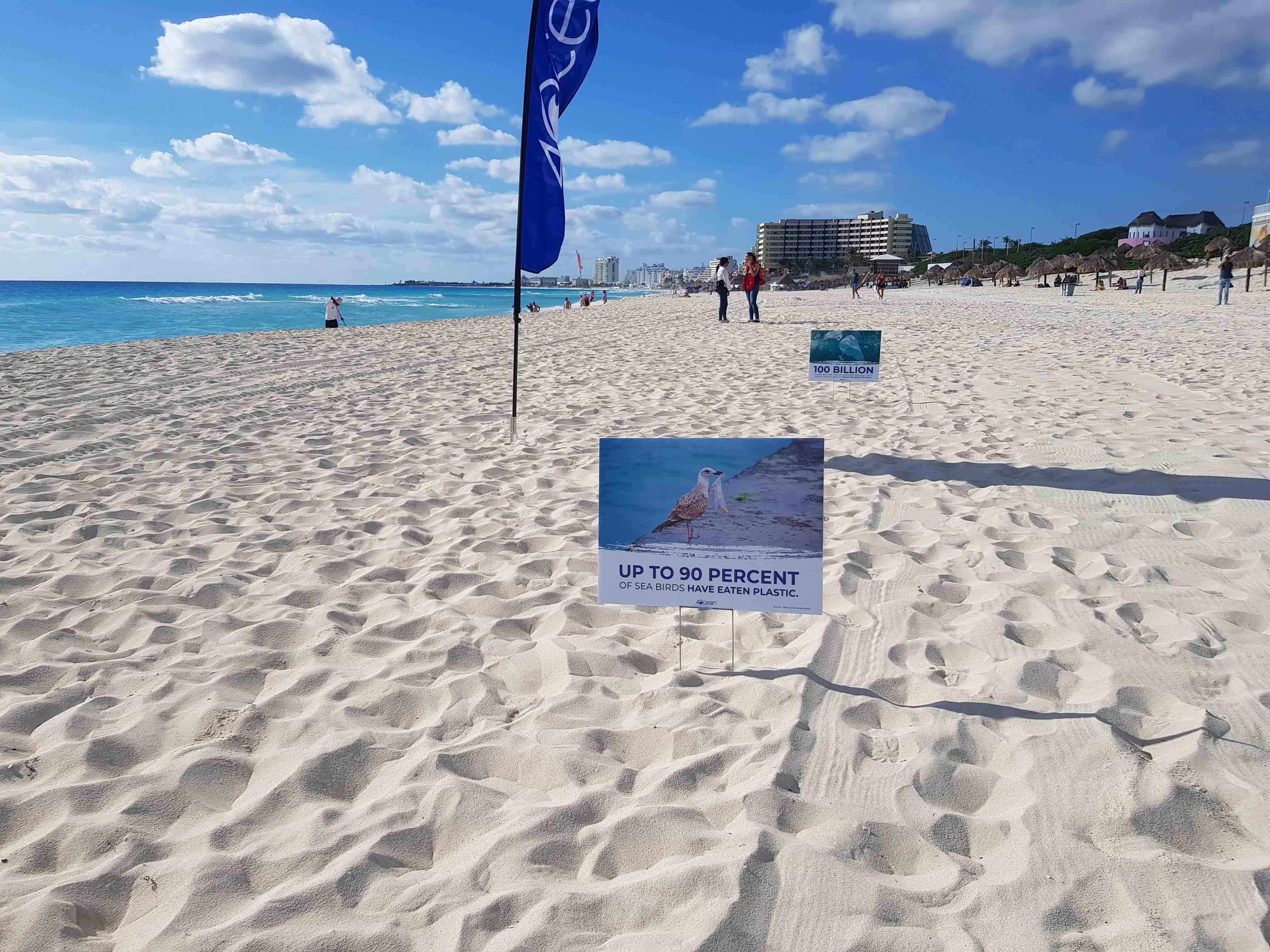 A Beach Clean with 4Ocean