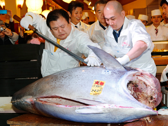 More trouble for Tuna