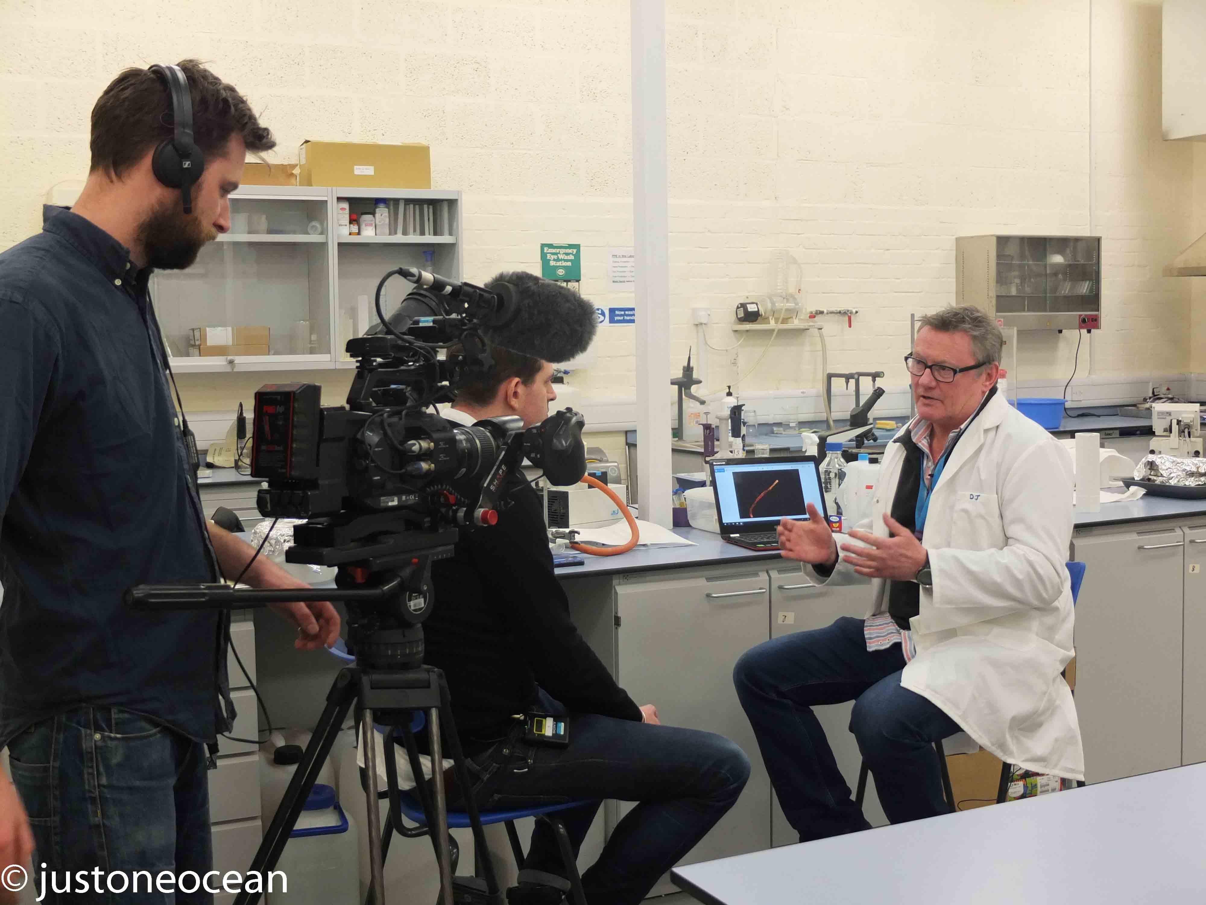 Testing Microplastics for the BBC
