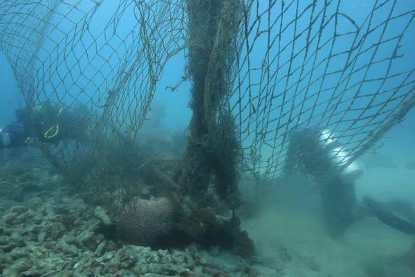 Removing old nets from Zanzibar reef