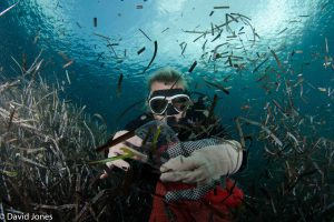 Diver collecting plastic waste in the ocean