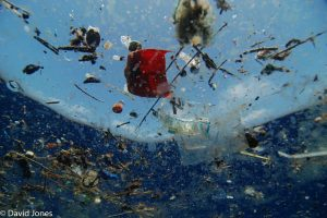 Plastic Pollution floating on the surface