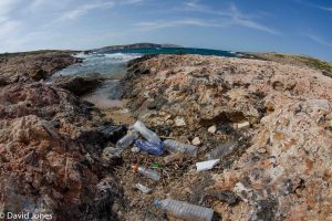 Plastic waste on a beach in Malta