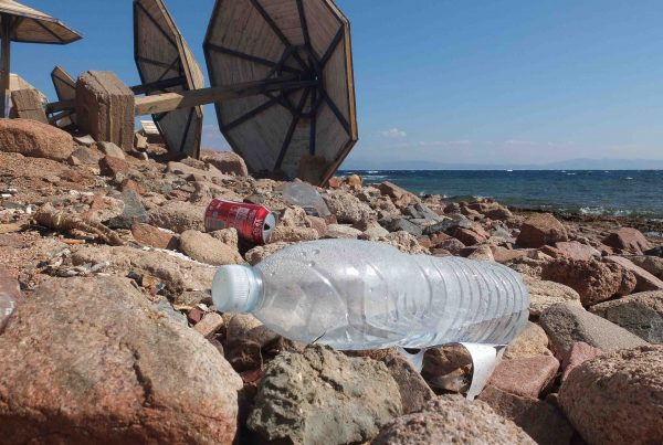 Bottle on the beach in Egypt