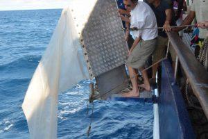 Bringing in the Manta Trawl