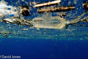 Plastic bottle off Sri Lanka
