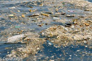 Ocean pollution off Sri Lanka