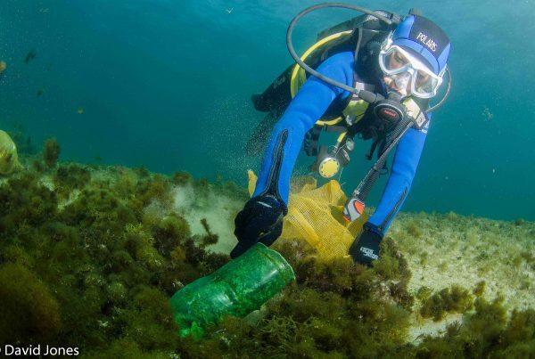 Diver picking up a plastic bottle