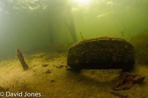 More tyres in the lake