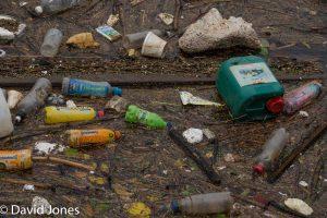Plastic Bottles in Salford