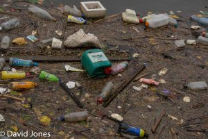 Plastic Pollution in Manchester