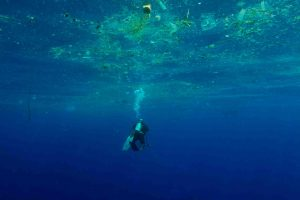 Sri Lanka - diver and waste filming A Plastic Ocean