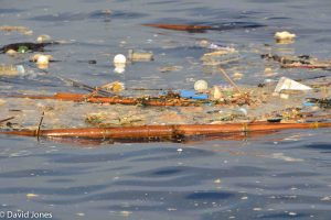 Sri Lanka - pollution in the ocean