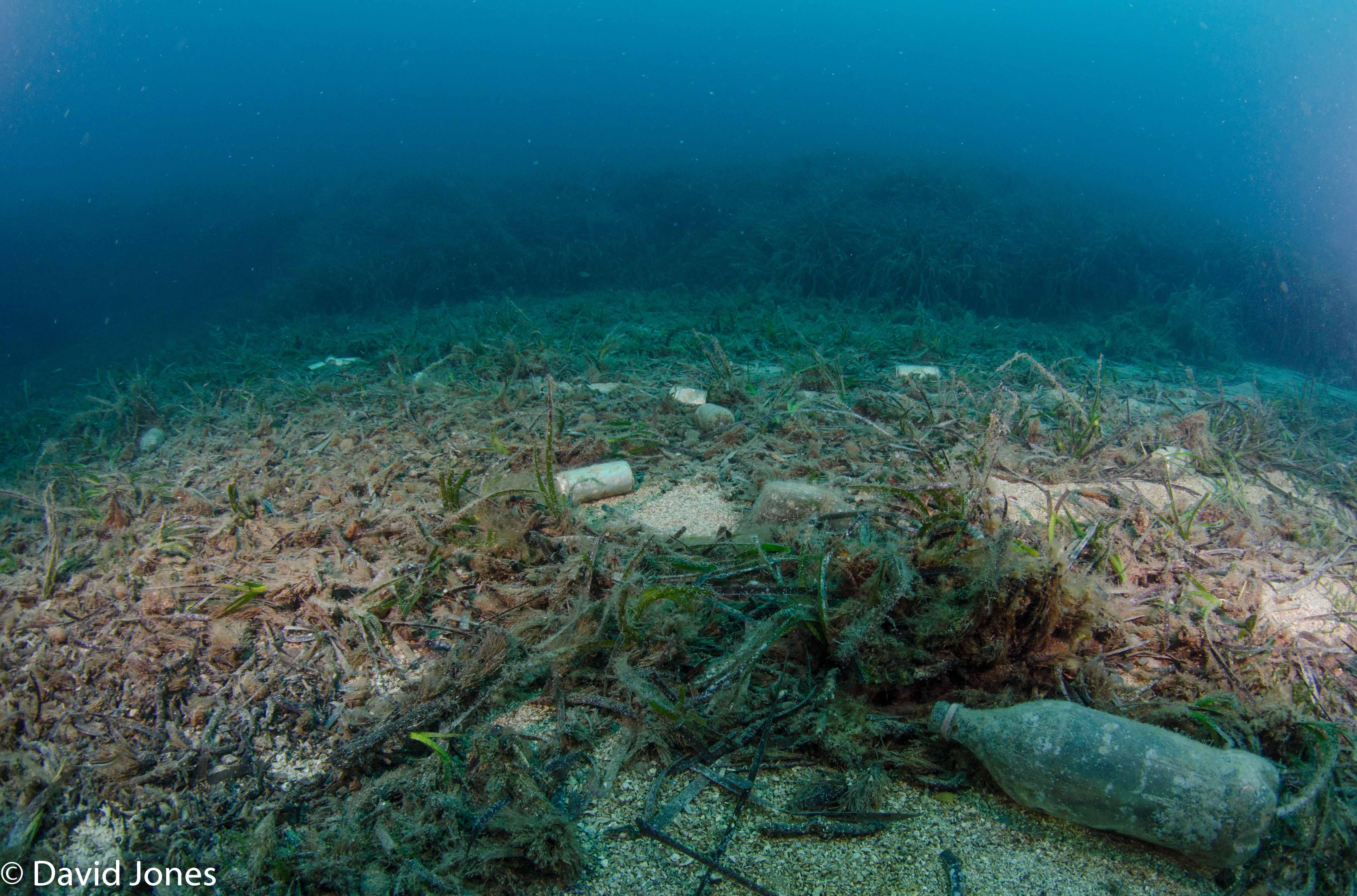 Plastic bottles on the sea floor