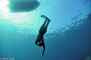 freediver heading down