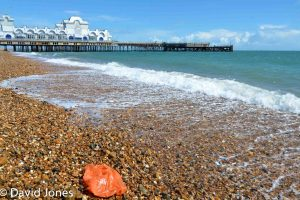 plastic bag on the beach