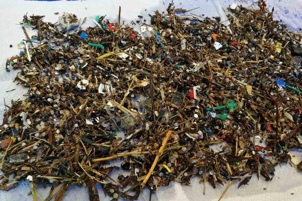 mixed microplastics