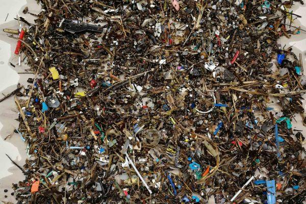 Microplastics from 1 sq m