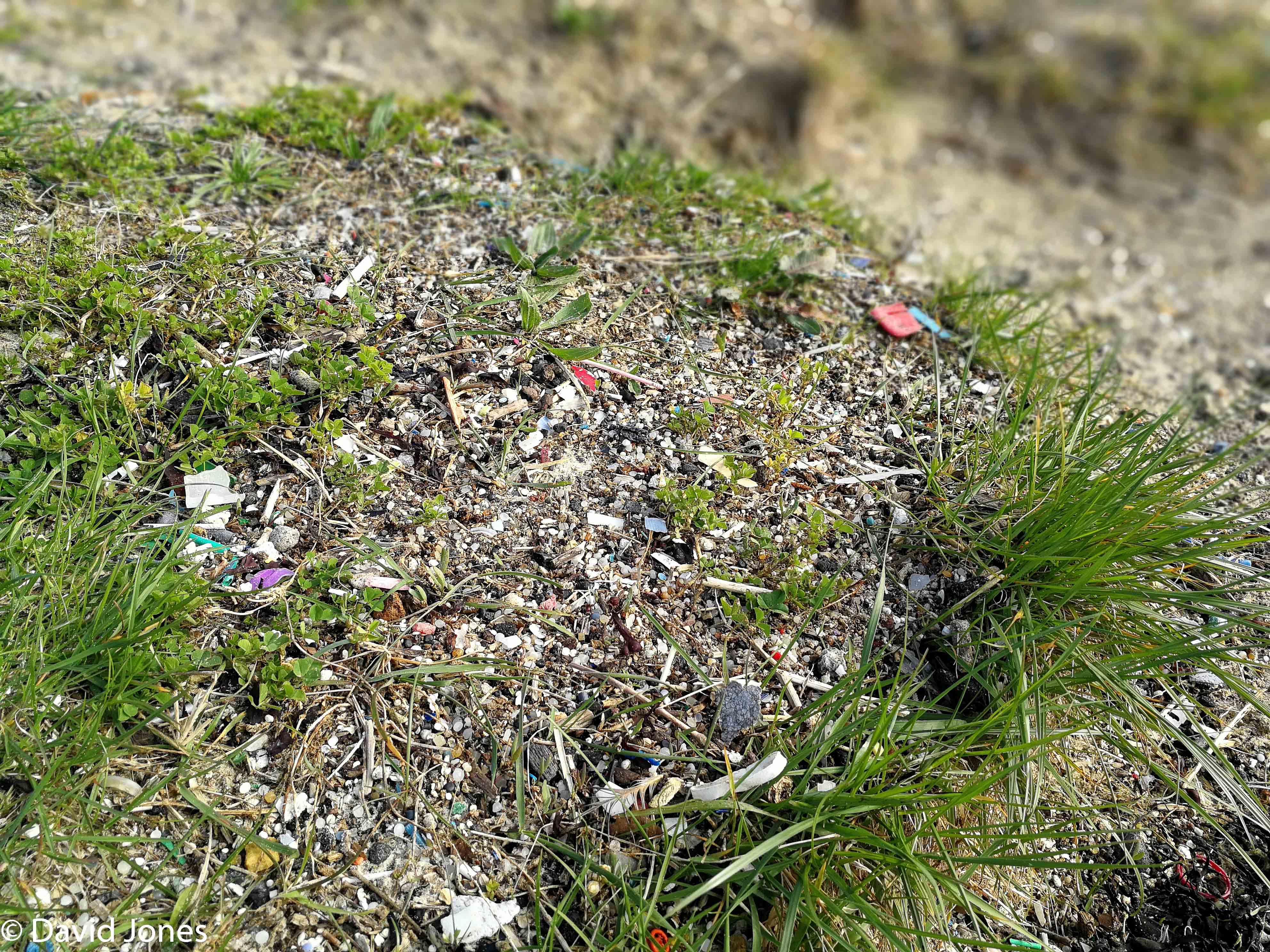 Langstone Harbour microplastics