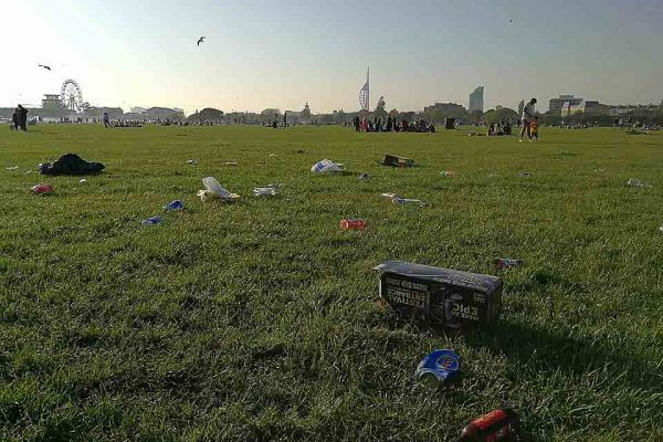 Southsea common plastic
