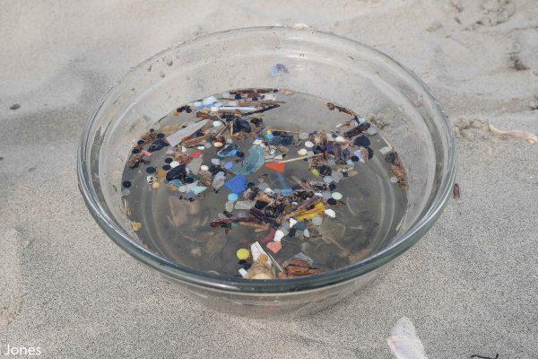 Microplastics in a bowl - 2