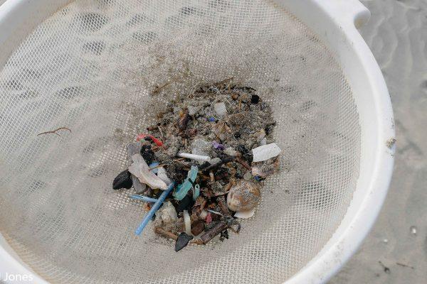 Microplastics in a sieve