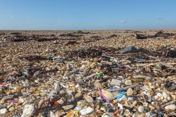 Microplastics on the beach