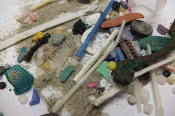 Primary and Secondary microplastics