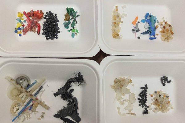 S4 microplastics
