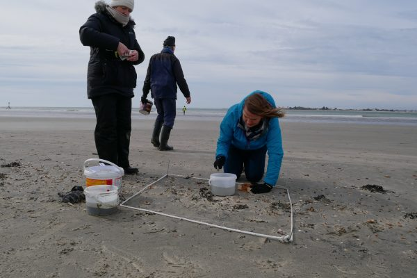 taking samples at wittering