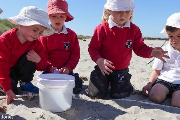 children finding microplastics
