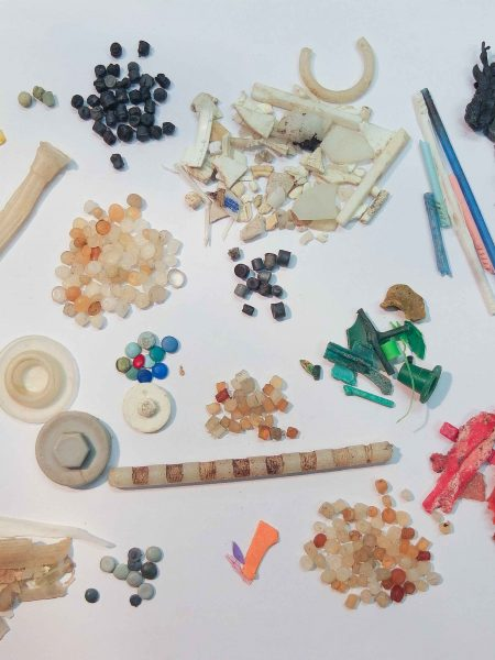 east head microplastics