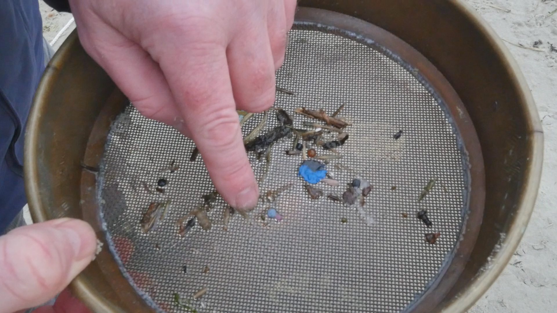 microplastic pieces in the sieve