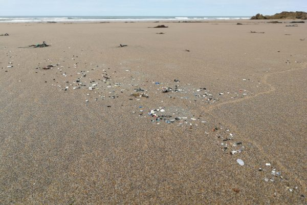 microplastics following a waveline in the sand