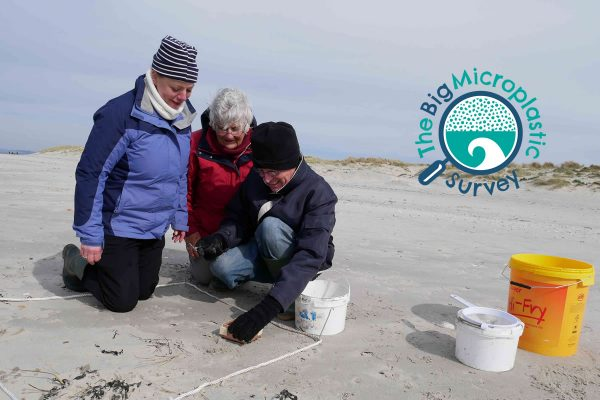 the big microplastic survey project