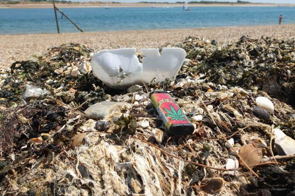 Eastney beach rubbish