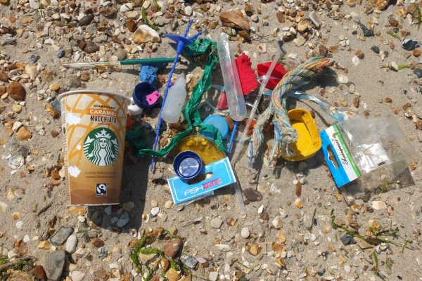 collection of items on the beach